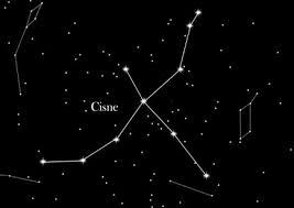 Constelación Cisne